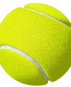 Ramos топка тенис