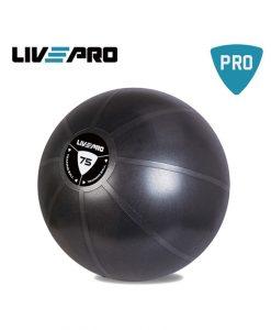 Гимнастическа топка Core Fit  – 75 см