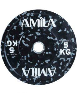Disk 247×300